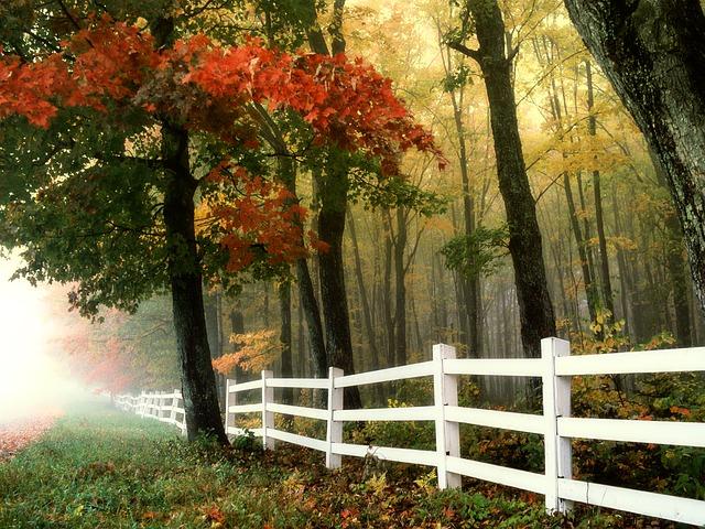 brzy ráno na podzim