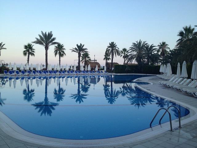 palmy za bazénem